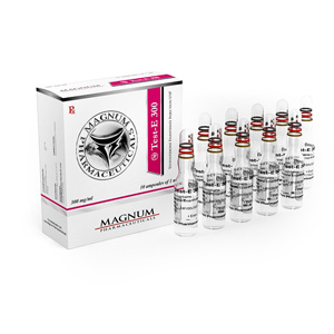 testosterone enanthate 10 ampoules (300mg/ml) online by Magnum Pharmaceuticals