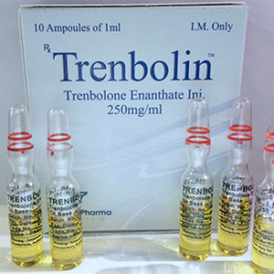 trenbolone enanthate 10 ampoules (250mg/ml) online by Alpha Pharma